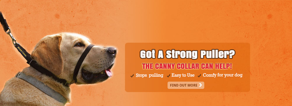 Got a strong puller? The Canny Collar can help. Stops Pulling. Easy to use. Comfy for your dog. Find out more...