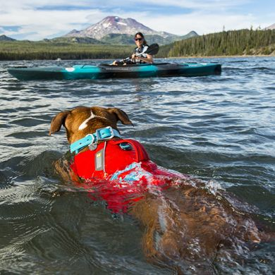 thumb_Ruffwear-Float-Coat-Swimming_adaptiveResize_390_390.jpg