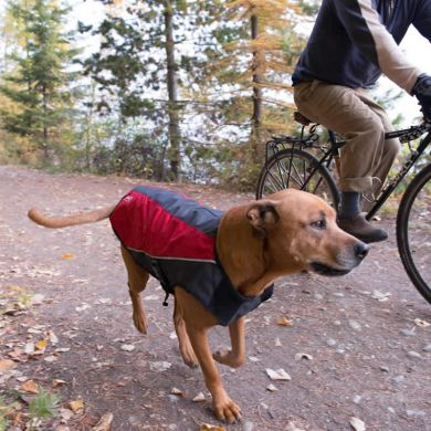 thumb_ezydog-element-dog-coat-side_adaptiveResize_390_390.jpg