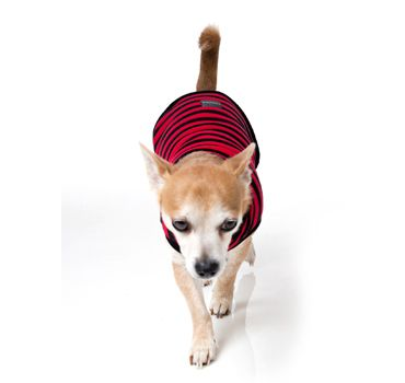 thumb_FuzzYard-Wrap-Dog-Coat-Red-nacho_adaptiveResize_390_390.jpg