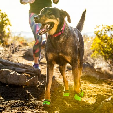 thumb_ruffwear-summit-trex-boots-close_adaptiveResize_390_390.jpg