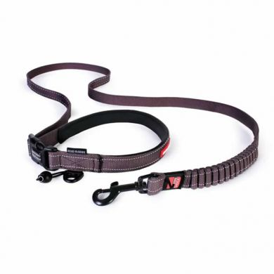 thumb_ezydog-road-runner-leash-chocolate_adaptiveResize_390_390.jpg