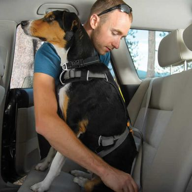 thumb_ruffwear-load-up-harness-seatbelt_adaptiveResize_390_390.jpg
