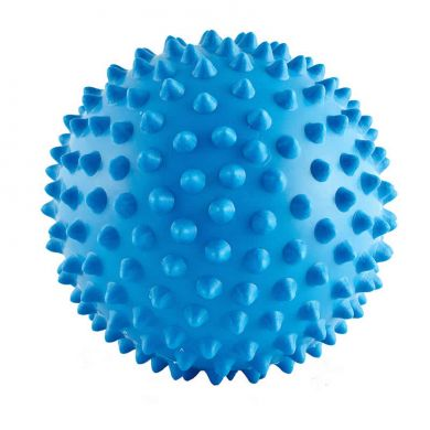 thumb_aussie-dog-catch-ball-soft-blue_adaptiveResize_390_390.jpg
