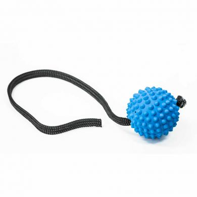 thumb_aussie-dog-long-ball-soft-blue_adaptiveResize_390_390.jpg