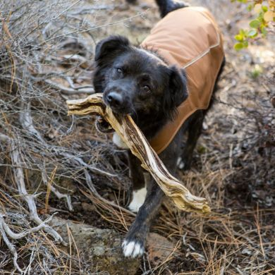 thumb_ruffwear-k9-overcoat-brown_adaptiveResize_390_390.jpg