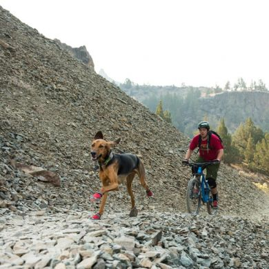 thumb_Ruffwear-Grip-Trex-Dog-Boots-Biking_adaptiveResize_390_390.jpg