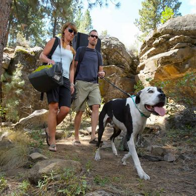 thumb_ruffwear-knot-a-leash-big-dog_adaptiveResize_390_390.jpg