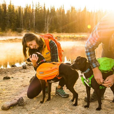 thumb_Ruffwear-Approach-Pack-River_adaptiveResize_390_390.jpg