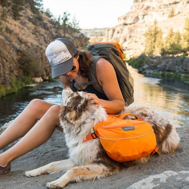 thumb_Ruffwear-Approach-Pack-Side_adaptiveResize_390_390.jpg