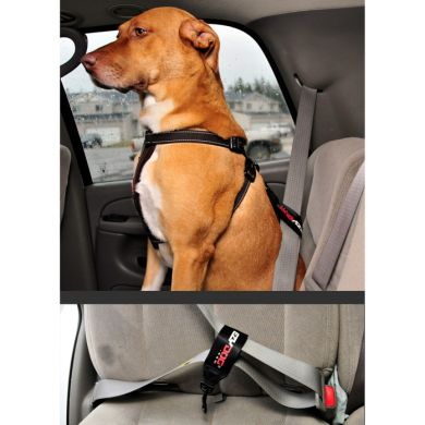 thumb_ezydog-chest-plate-harness-car-restraint-demo_adaptiveResize_390_390.jpg
